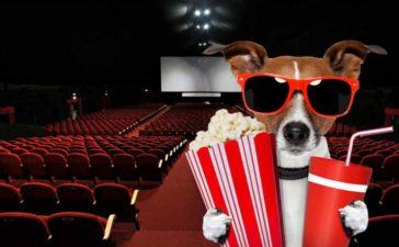 Consejos útiles para escribir críticas de cine