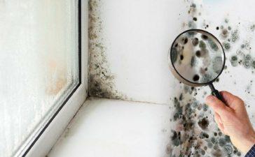 Consejos para eliminar la humedad del hogar