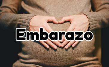 Información sobre el Embarazo