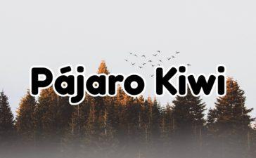 Información sobre el Pájaro Kiwi